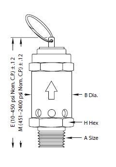 M5120N-1M(L) ASME Relief Valve